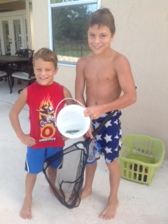 wildmen capture crayfish in pool